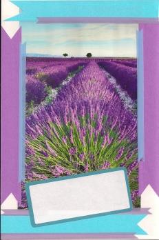 """""""lavendar fields"""""""